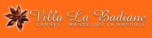 logo_badiane